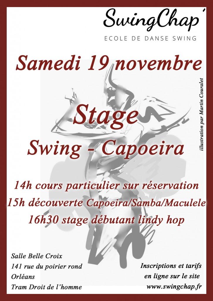 stage-capoeira-19-nov-2016